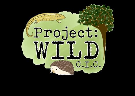 Project: Wild C.I.C